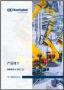 Cat Discrete Manufacturing & Process Industries (ex PTS) - SPA